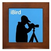 iBird (blue) Framed Tile