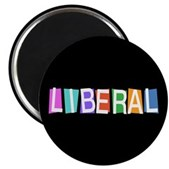 Colorful Retro Liberal Magnet