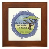 Linnaeus Quote Framed Tile