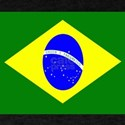 Flag of Brazil T-Shirt