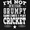 Grumpy Cricket Player Funny Gift T-Shirt