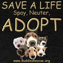 Spay Neuter Adopt - Dark T-Shirt