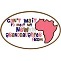 Africa Can't wait to meet Gra White T-Shirt