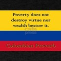 Poverty Does Not Destroy - Colombian Proverb T-Shirt
